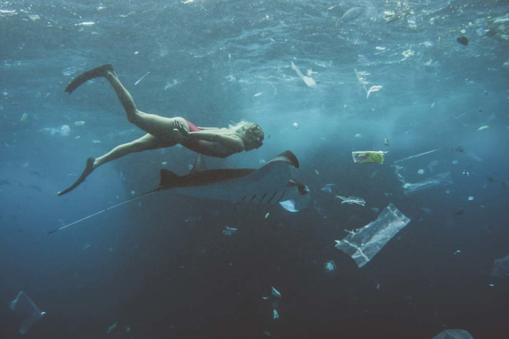 Plastic pollution in fish act as endocrine disruptors and can cause cancer