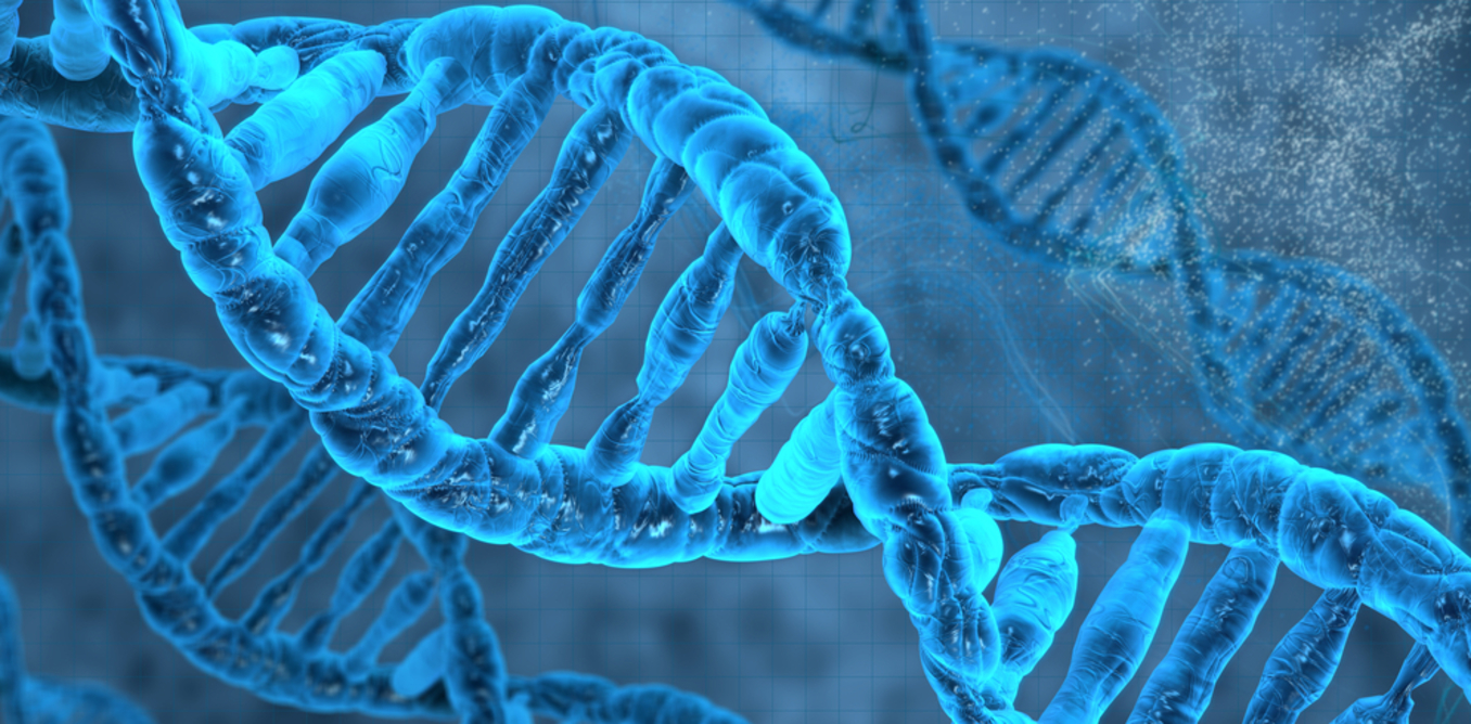 genetic testing for individualized health and disease prevention