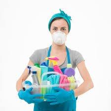 household toxins as hormone disruptors