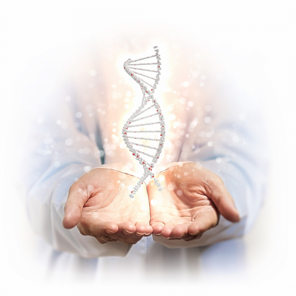 A Functional Medicine Approach to DNA health, diet and lifestyle